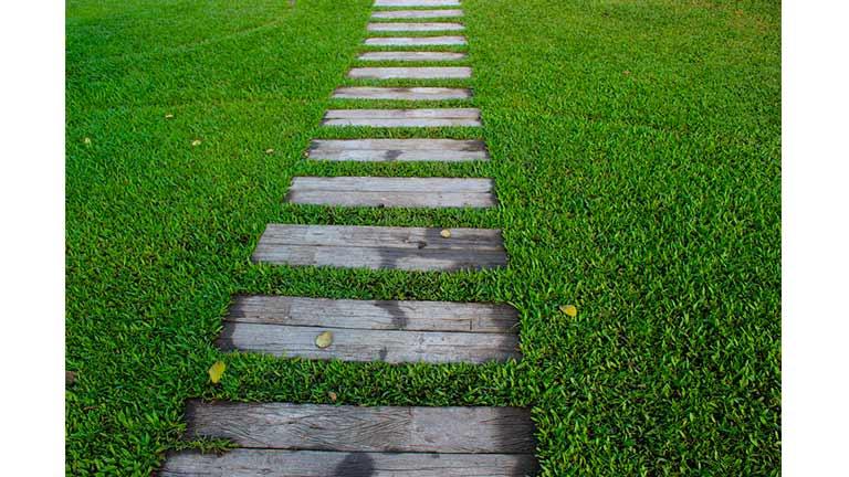 camino de jardin